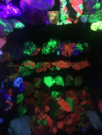 Electric Ladyland - the First Museum of Fluorescent Art: photo5.jpg