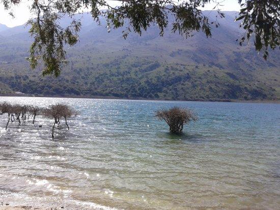 Kournas, Greece: Λίμνη Κουρνά