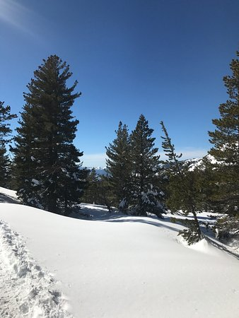 Squaw Valley, CA: photo1.jpg