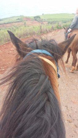 Wailuku, HI: My view from Bailey
