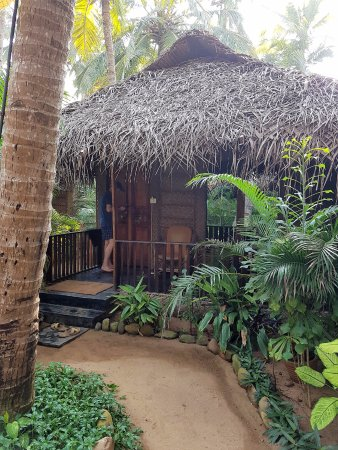 Agonda White Sand: view of our beach hut