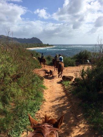 Koloa, HI: Beautiful place to do your horseback riding, gorgeous views.