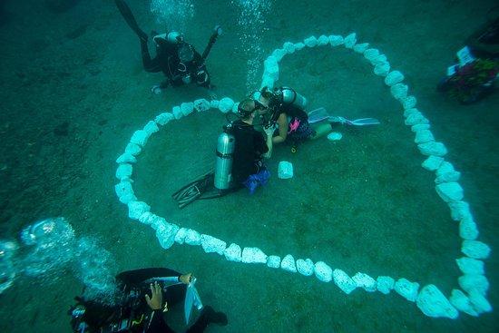 Paradise Taveuni Underwater Wedding