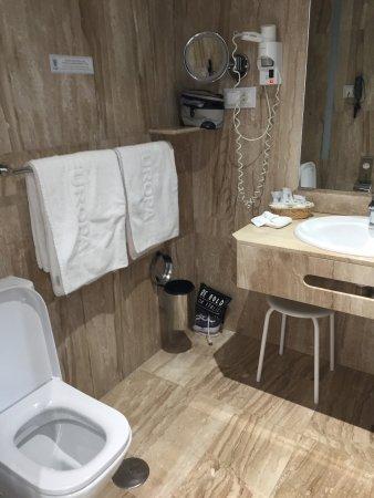 Hotel Europa: Bathroom has a large walk in shower, no tub.