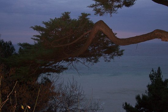 Yalta Municipality: Приморский парк – воспоминания о юности