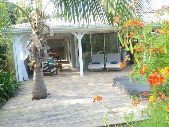 the infinity pool in the nude resort Jardin d\'Ô - Picture of Jardin ...