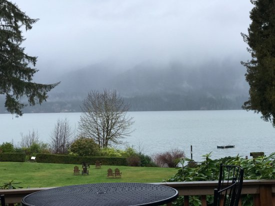 Quinault, WA: Wonderful view onto the Lake from the Lodge