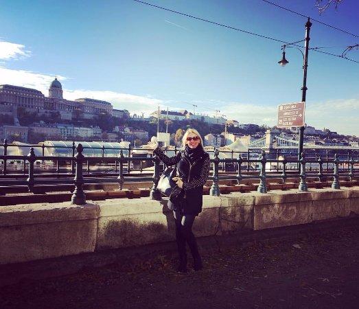 Vecses, Macaristan: Danube Corso