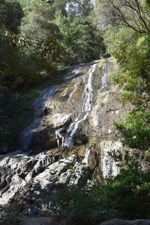 Cascade Manor: Ein Wasserfall in der Nähe des Hotels