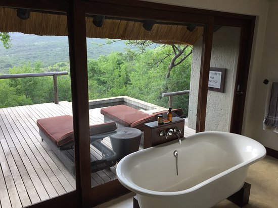Phinda Private Game Reserve, South Africa: photo7.jpg