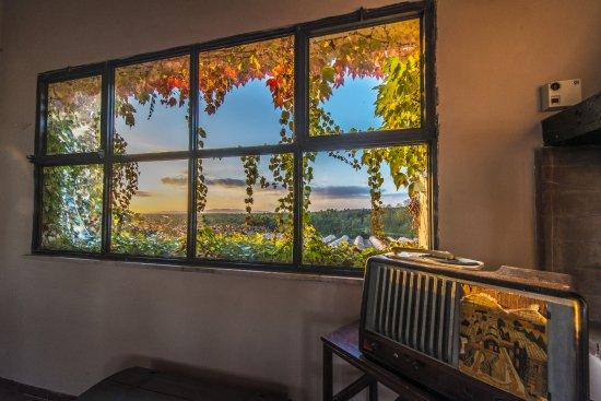 Canino, Italy: Edera alla finestra