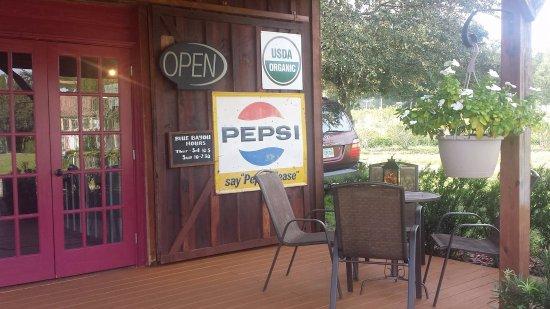 Yalaha, Φλόριντα: Porch