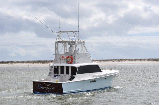 Ocean Ox Charters