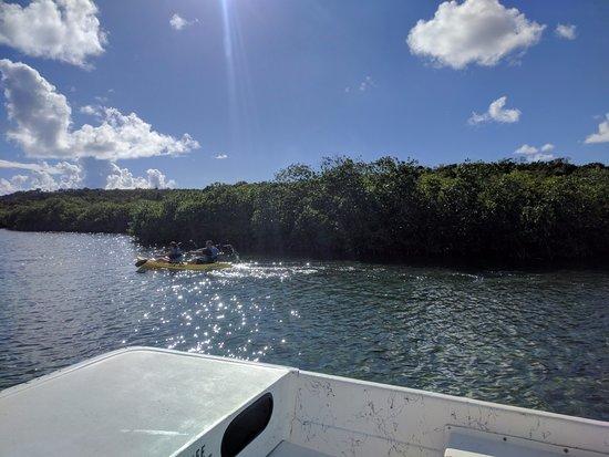 Saint Phillip Parish, Antigua: kayaking