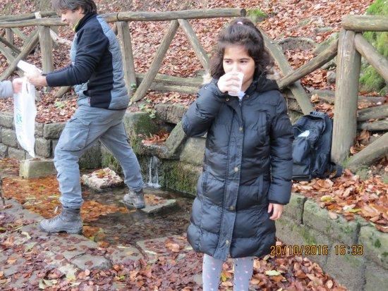 Verghereto, อิตาลี: Bere l'acqua del Tevere dalla sorgente.