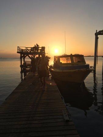 Utila, Honduras: UDC Dock at Sunset