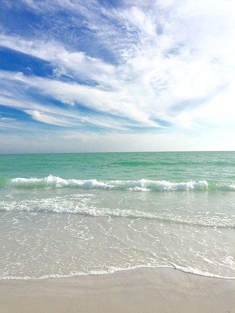 Siesta Beach : Siesta Key Beach