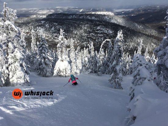 Petite-Riviere-Saint-Francois, Kanada: Whisjack