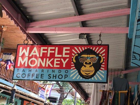 Image result for Waffle Monkey tamarindo