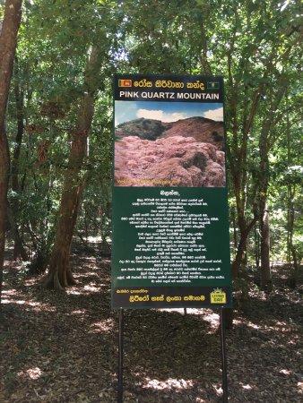 Dambulla, Sri Lanka: photo8.jpg