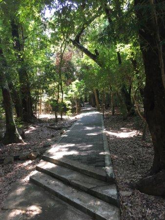 Dambulla, Sri Lanka: photo9.jpg