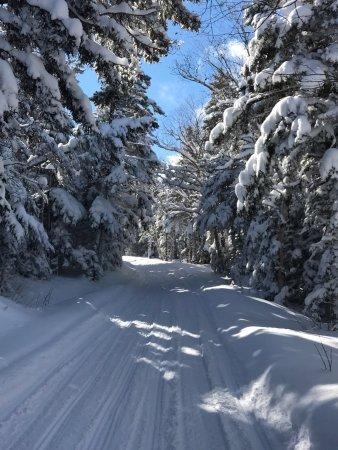 Bretton Woods, NH: photo3.jpg