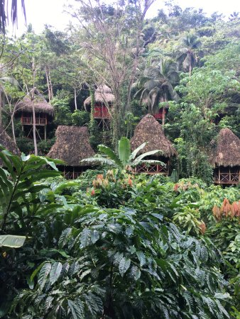Santa Barbara de Samana, Republik Dominika: The huts you can rent a short walk from the ziplines