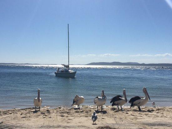 Martys at Little Beach: photo0.jpg