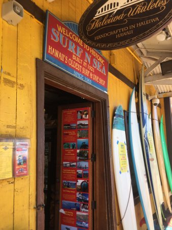 Surf N Sea: photo7.jpg