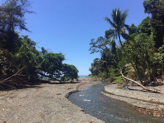 Puerto Jimenez, Costa Rica: photo0.jpg