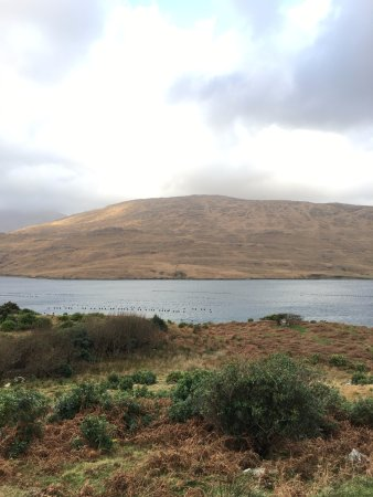 Leenane, Ierland: Killary Fjord