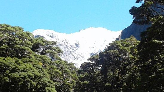 Te Anau, New Zealand: NZ at its best
