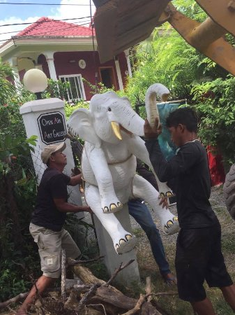Kep, Camboya: Welcome to my friend the elephant
