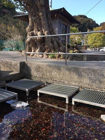 Saiki, Giappone: 水が湧いています。 豊かな空気が流れています。