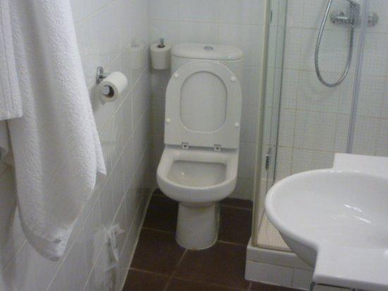 ibis styles nantes centre place graslin salle de bain impossible de se retourner - Salle De Bains Nantes