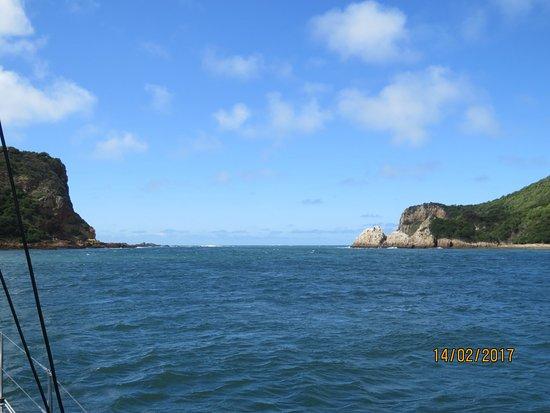 Heads Explorer Catamaran Day Cruises: Die Durchfahrt in den offenen Ozean