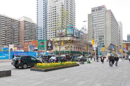 Comfort Hotel Downtown : Bloor-Yorkville Shopping District