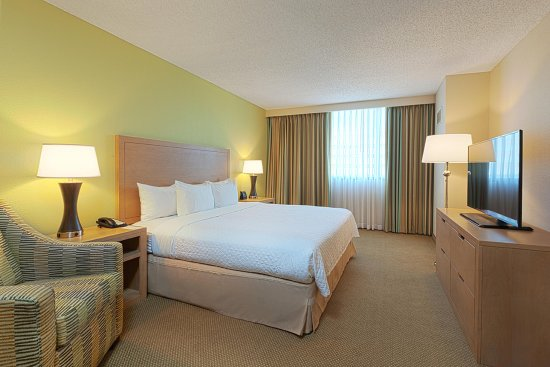Embassy Suites by Hilton Tampa - Airport/Westshore: King Bed