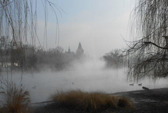 Vidam Park: Thermal Spring in Winter