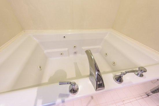 Όλμπανι, Τζόρτζια: Jacuzzi Bathroom
