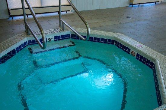 Holiday Inn Rapid City - Rushmore Plaza : Whirlpool