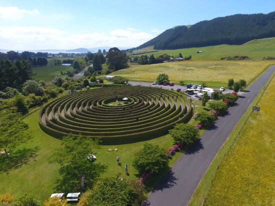 Ngongotaha, Nieuw-Zeeland: Amazing drone shot of the beautiful hedge maze located in Rotorua, this is the place to play!