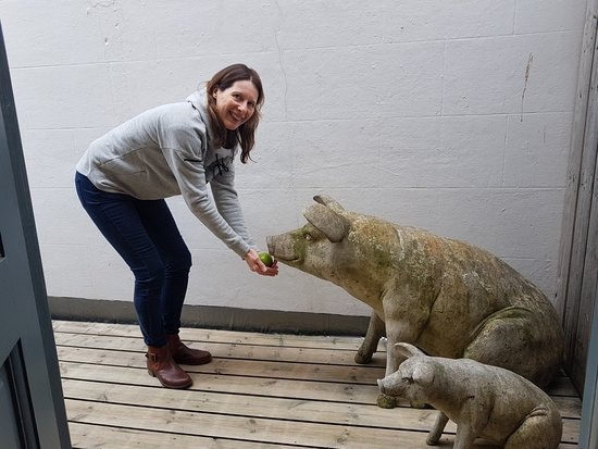 The Marine: my wife loved the pigs on our balcony