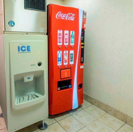Ocoee, FL: Vending