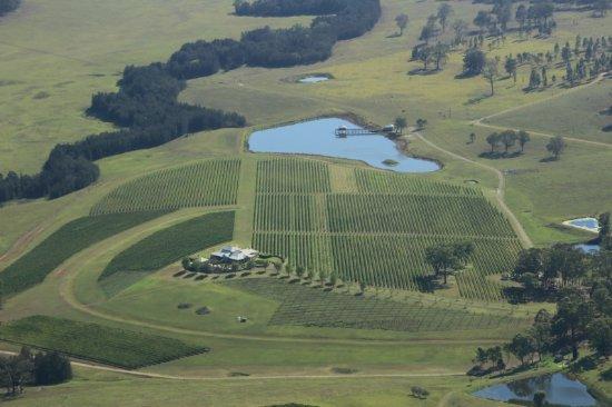 بوكولبن, أستراليا: One of the many vineyards in the area
