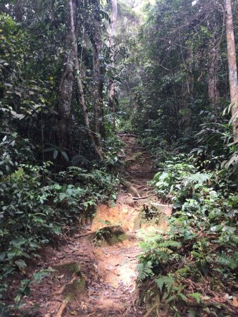 Tanah Rata, Malesia: photo3.jpg
