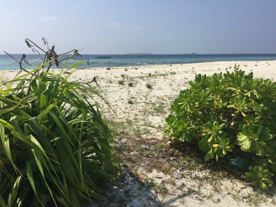 Lhaviyani Atoll: Island Beach nearby.