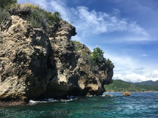 Miguel's Diving Gorontalo: One of dive sites