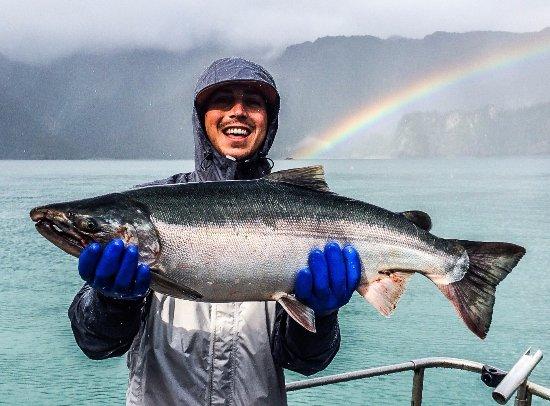 คีไน, อลาสกา: Seward Silver Salmon Fishing