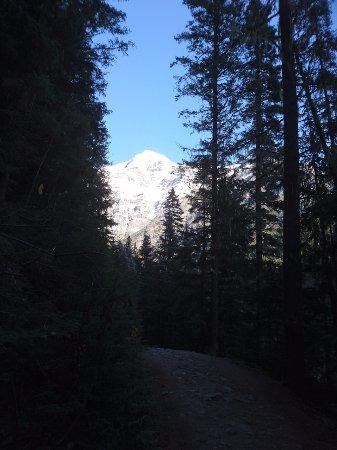 Kanadische Rockies, Kanada: Blick auf den Mount Robson vom Wanderweg